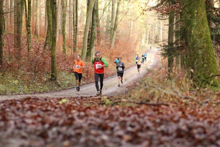 Erfolgreiche Testwettkämpfe für LSC Höchstadt Läufer